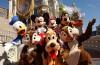 ZDA, potovanje Florida, Walt Disney World, zabaviščni park