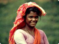 Sanjska potovanja, Šri Lanka, Lepote Šri Lanke