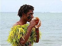 Sanjska potovanja, Fidži, Počitnice na Fidžiju