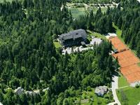 Romantični hotel Ribno na Bledu