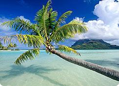 Poročno potovanje, Francoska Polinezija