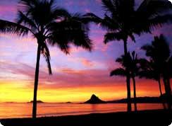 Poročno potovanje, Havaji
