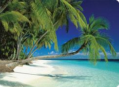 Poročno potovanje, Maldivi